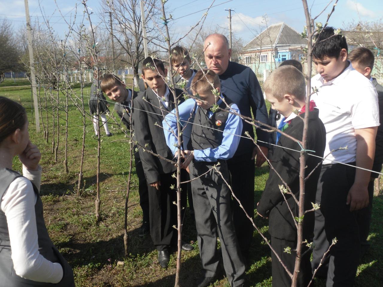 Пришла весна! Много работы в яблоневом саду